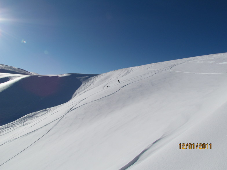 Pylypets 2011