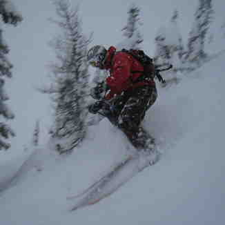 Skiing the Horse Dec 11, Kicking Horse