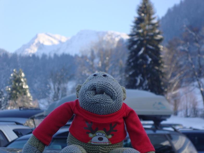 Mr PG Monkey, Oberstaufen