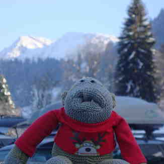 Mr PG Monkey, Oberstaufen