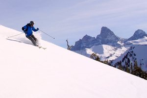 Roo at Targhee, Grand Targhee photo
