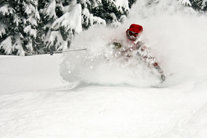 Deep Fluffy Pow, Last Frontier Heliskiing photo