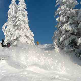 Powder, St Jean d'Aulps/Espace Roc d'Enfer