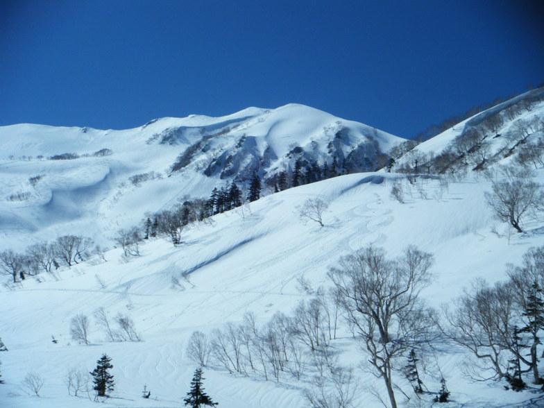 Tsugaike Kogen snow