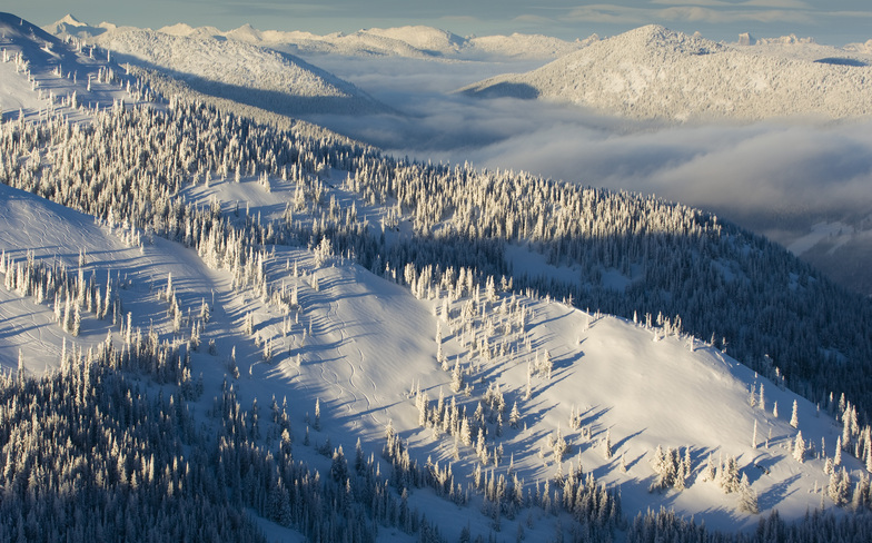 Grey Mountain - Side Country slopes, Red Mountain Resort