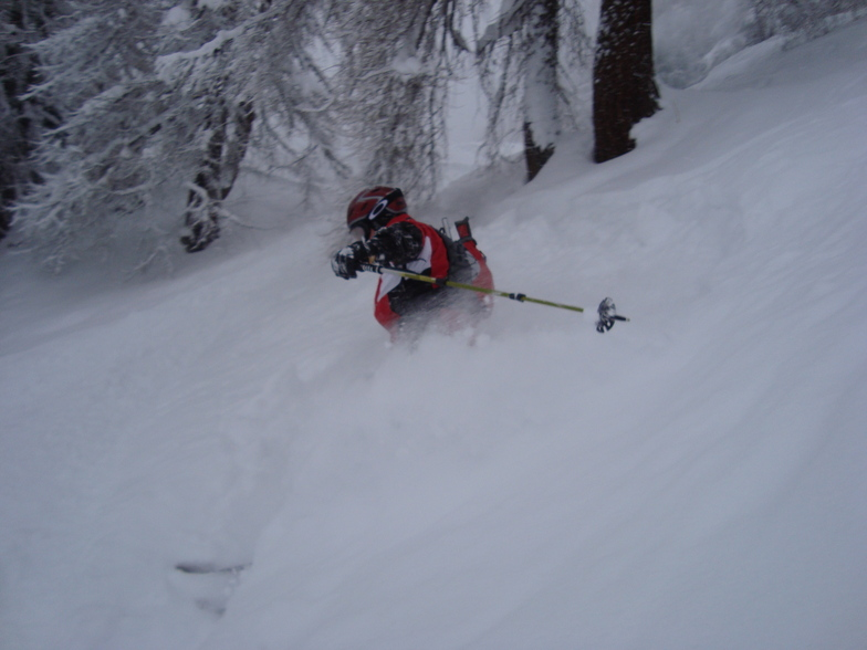Godfrey in the trees above Davos