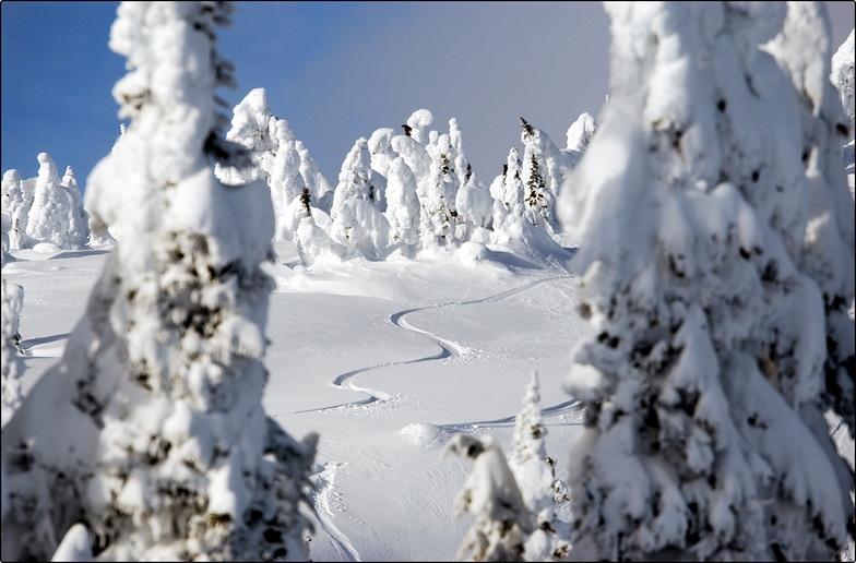 nice tracks, Big White