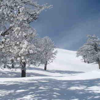 snow paradise, Vasilitsa
