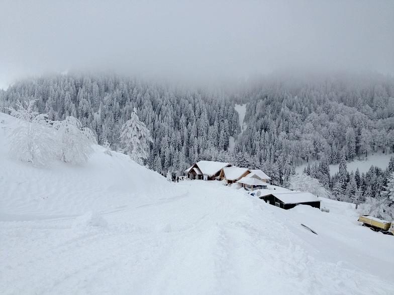 Deep Snow in Kozuf