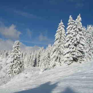 Ski run down to Ranfolly lift, Les Gets