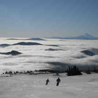 Above the clouds, Mt Hood Meadows