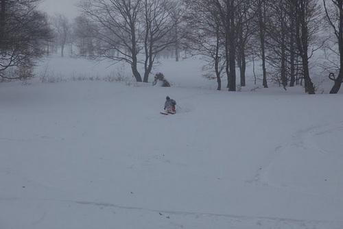 Podobovets Ski Resort by: o