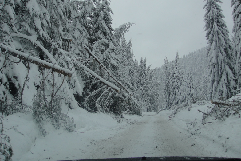 the route to Pamporovo