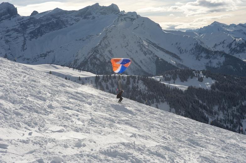 Villars-Gryon Speedflyer