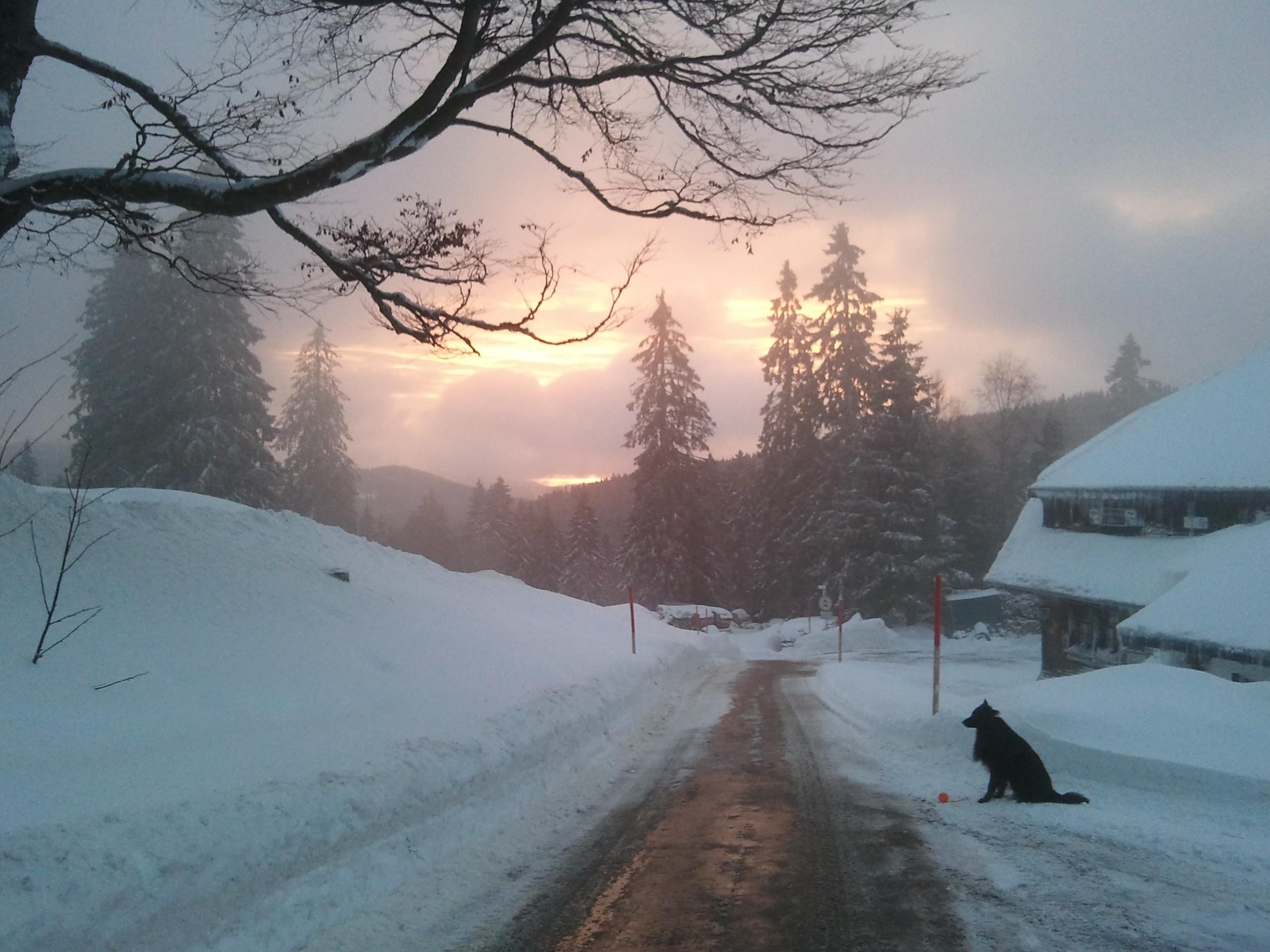 Sunrise at Feldberg
