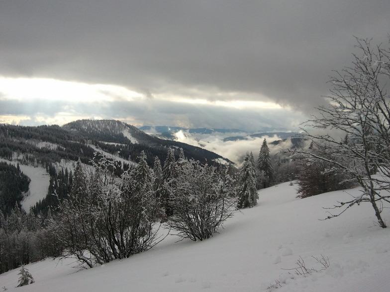 """View from the """"Panoramaweg"""", Feldberg"""