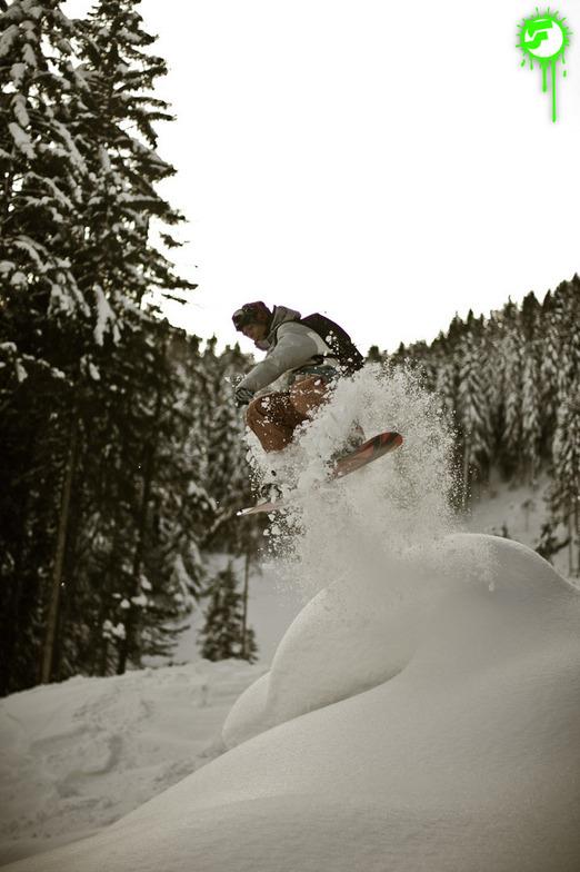 2012-01-17 | PowderRun, Hochzillertal-Kaltenbach