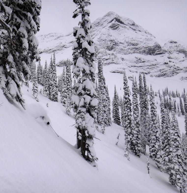 Cedar Ridge 2012-01-18, Fernie