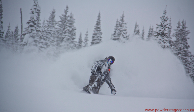 Cold Smoke, Castle Mountain Resort