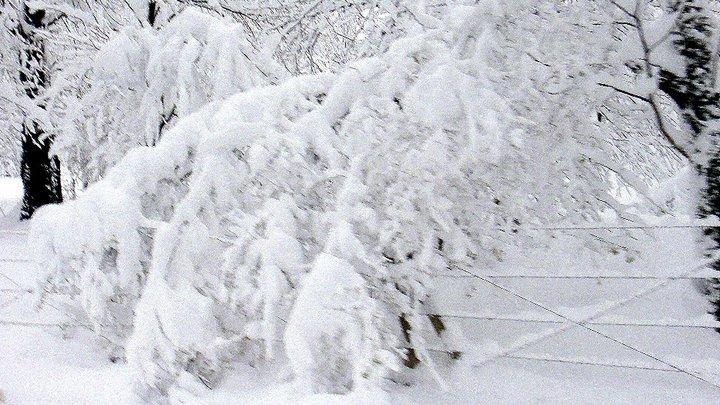 heavy snow, Kartepe