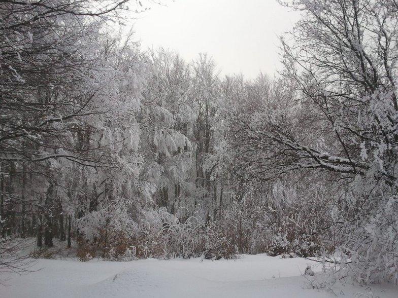 Plenty of snow, Krushevo