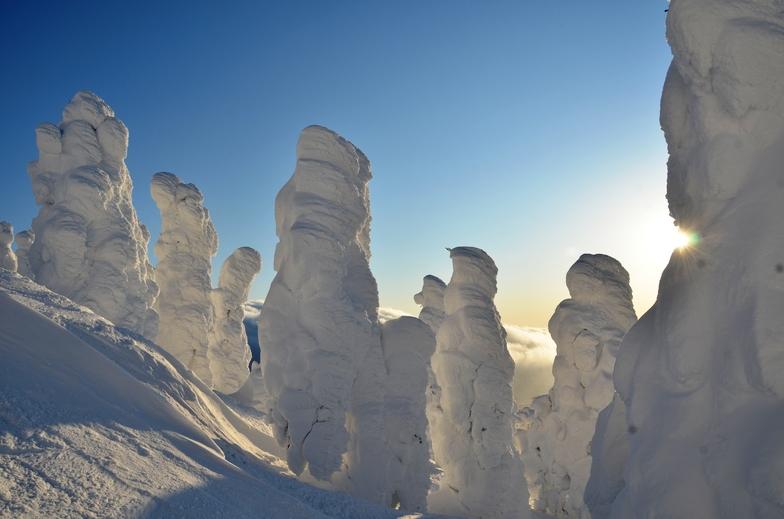 Junyo (Snow Monsters) Hakkoda, Aomori, Japan