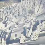 Junyo (Snow Monsters) Hakkoda, Aomori, Japan, Japan - Aomori