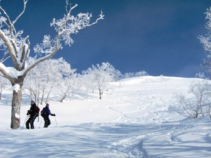 Asahidake Backcountry photo