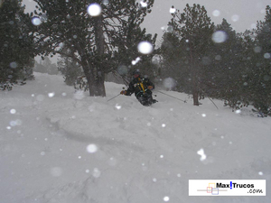 Me freeriding Arcalís Forest, Ordino-Arcalís photo