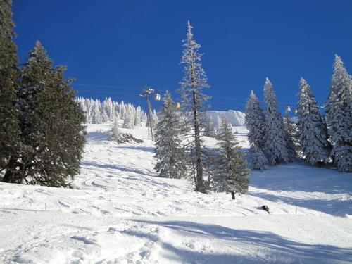 Oberstaufen/Hochgrat Ski Resort by: Anthony  Bishop