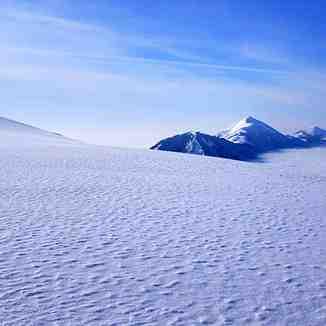 Polar Breza, Brezovica