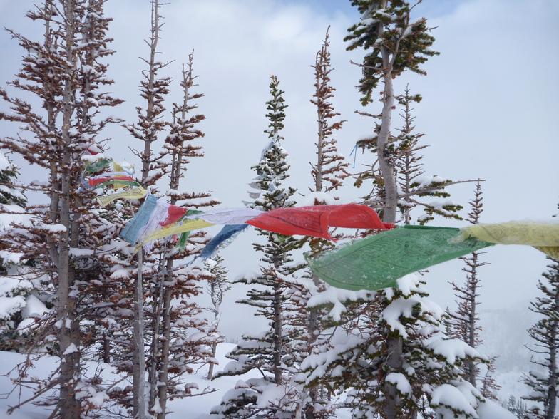 Prayer flags at Rudis...Kicking Horse