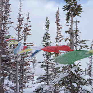 Prayer flags at Rudis...Kicking Horse