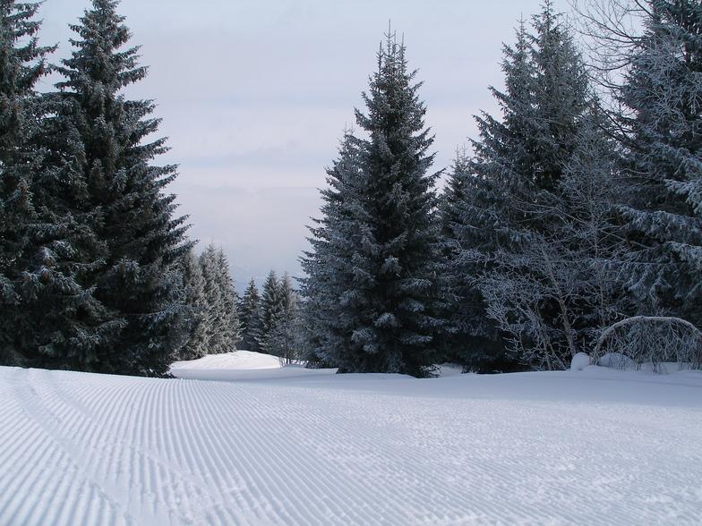 Frisch präpariert, Obersaxen - Mundaun - Val Lumnezia