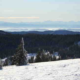 the swiss alpes, Feldberg