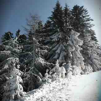 neige vintage, Gérardmer