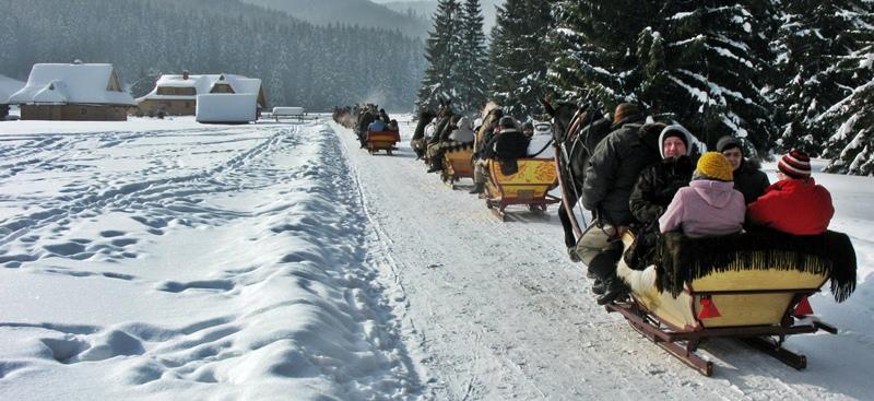 Sleigh ride in Chocholowska Valley (10.02.2012), Zakopane