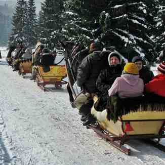 Sleigh ride in Chocholowska Valley (10.02.2012), Zakopane