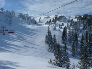 Jahorina freeride arena photo