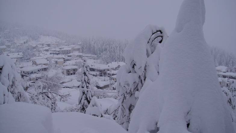 elati trikalon, Pertouli Ski Center