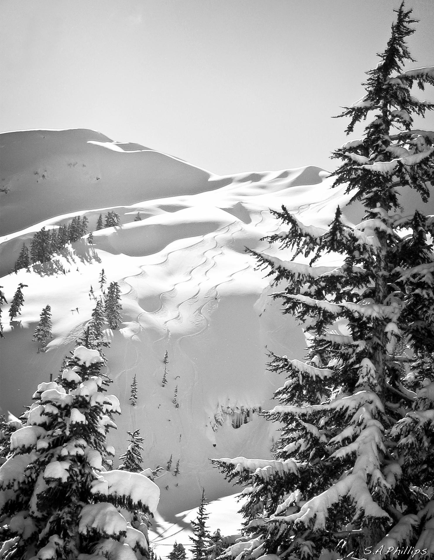 Mt. Baker Freshies, Mount Baker