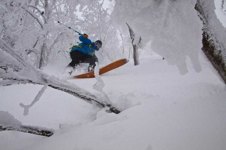 Hakuba Cortina Kokusai snow
