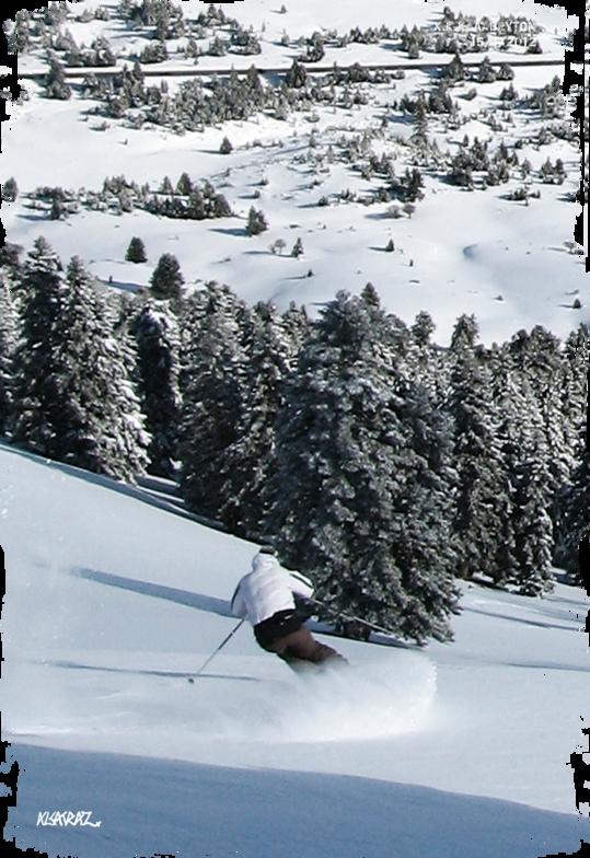Tree powder skiing, Kalavryta Ski Resort