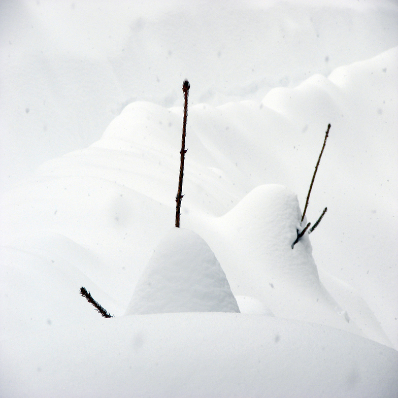 Over 200 cm. Of Snow, Resort Mavrovo