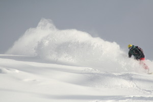 POWDER RUSH!1, Winghills Shirotori Resort photo