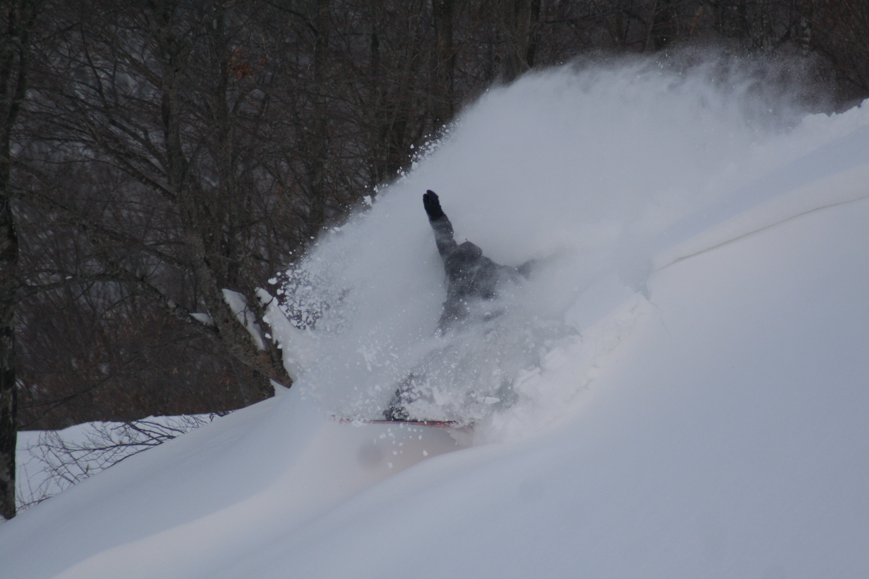 POWDER RUSH!7, Winghills Shirotori Resort