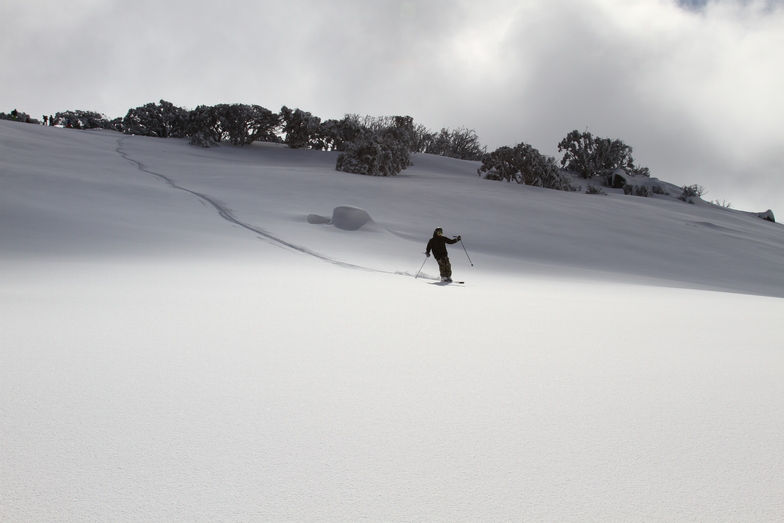Aussie snow!, Thredbo