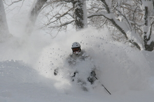 Big D at home in the pow!, Niseko Hanazono Resort photo