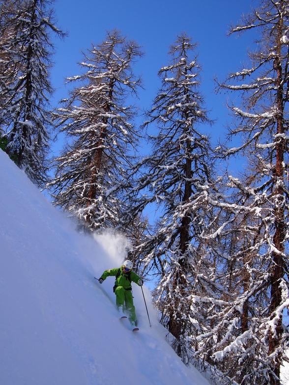Steep Trees, Bruson