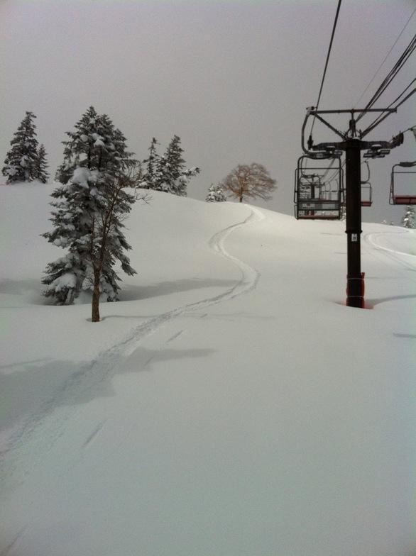 Forester Shibu Toge snow